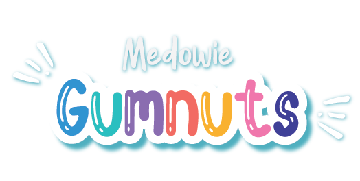 Medowie Gumnut Preschool Rated Exceeding National Quality Standards